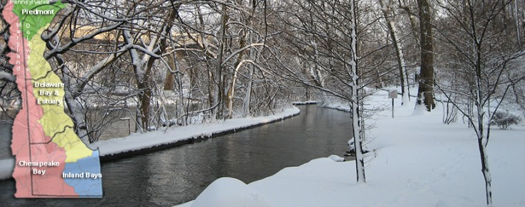brandywine2winter_wp850x340
