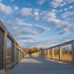 Gordons Pond Trail at Cape Henlopen State Park by Joe Hengel