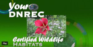 Certified Wildlife Habitats